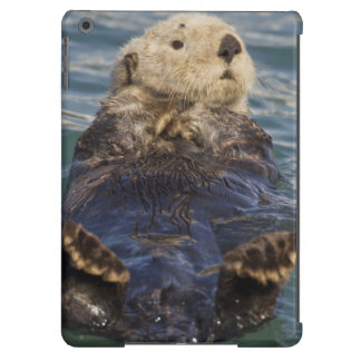 Sea otters play on icebergs at Surprise Inlet iPad Air Cover