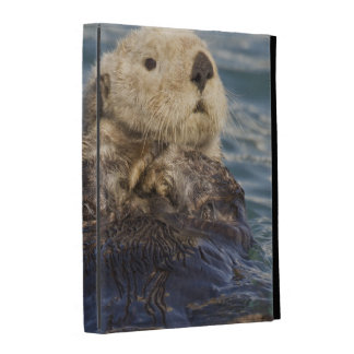 Sea otters play on icebergs at Surprise Inlet iPad Cases