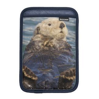 Sea otters play on icebergs at Surprise Inlet iPad Mini Sleeves