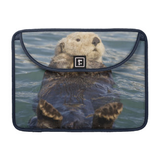 Sea otters play on icebergs at Surprise Inlet Sleeve For MacBooks