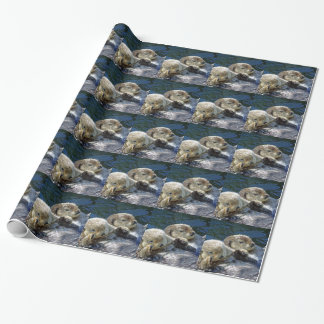 Sea-otters Wrapping Paper