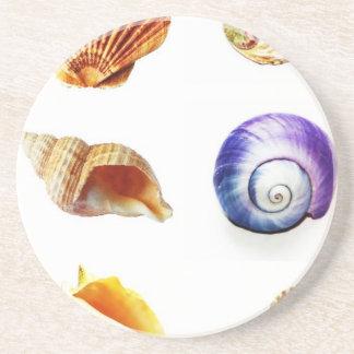 sea shell design bright and colourful beverage coaster