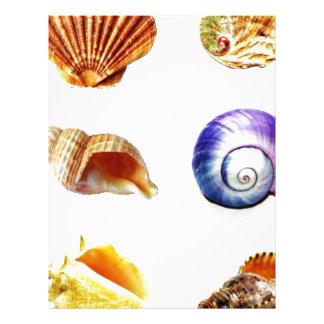 sea shell design bright and colourful custom letterhead