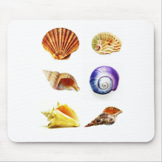 sea shell design bright and colourful mouse pad