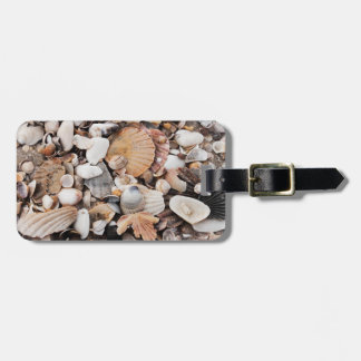 Sea shell design luggage tag