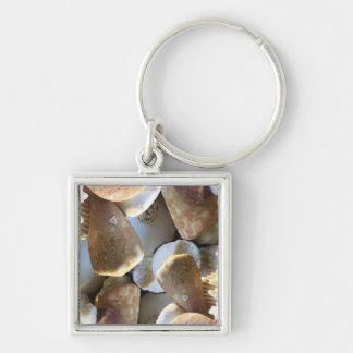 sea shell key ring Silver-Colored square keychain