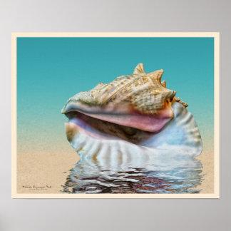 Sea Shell Ocean Blue Poster
