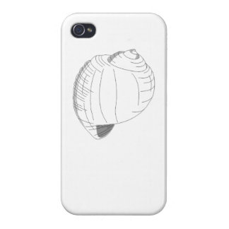Sea Shell Sketch iPhone 4 Covers