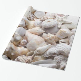 Sea Shell & Starfish Background - Beach Shells