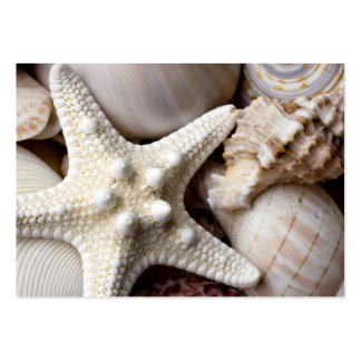 Sea Shell Starfish Background - Beach Shells Large Business Card