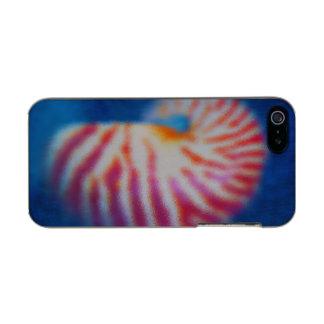 Sea Shell under Water Incipio Feather® Shine iPhone 5 Case