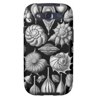 Sea Shells and Fossils in Black and White 1 Galaxy SIII Cover