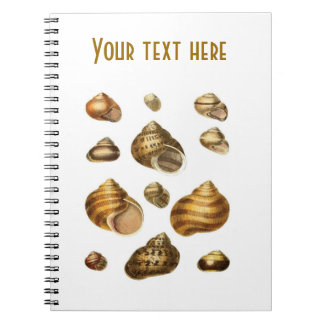 Sea shells and maritime theme, brown ocean shell spiral notebooks