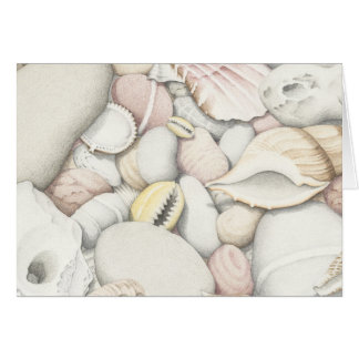 Sea Shells and Pebbles in Coloured Pencil Card