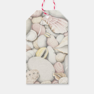 Sea Shells and Pebbles in Coloured Pencil Pack Of Gift Tags