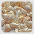 sea-shells bg square sticker