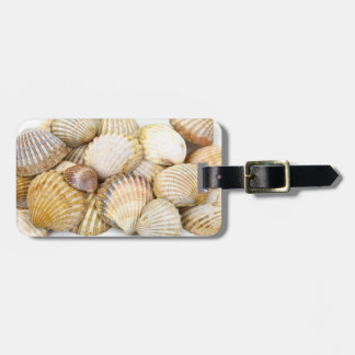 Sea Shells Collage Luggage Tag