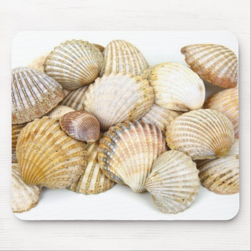 Sea Shells Collage Mouse Pad