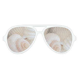 Sea shells collection, eyepster sunglasses