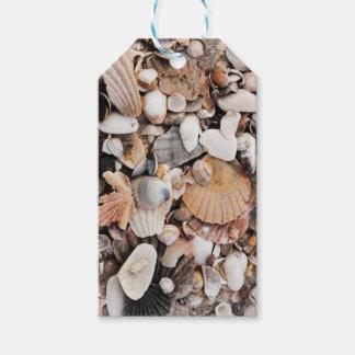 Sea shells gift tag