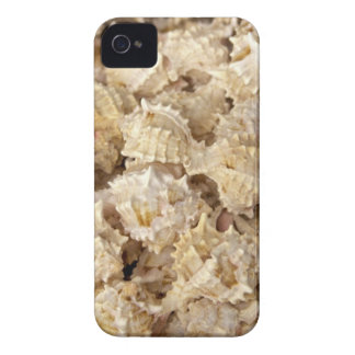 Sea Shells iPhone 4/4S Case-Mate Case