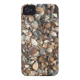Sea shells iPhone 4 cover