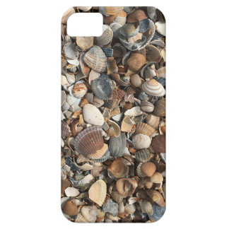Sea shells iPhone 5 cover