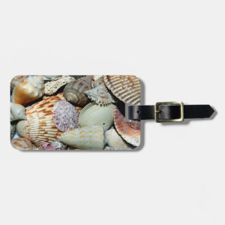 Sea Shells Luggage Tag