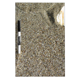 Sea shells on sand. Summer beach background Dry Erase Whiteboards