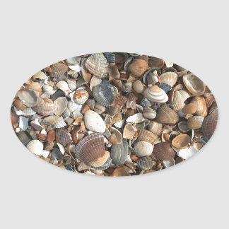 Sea shells oval sticker