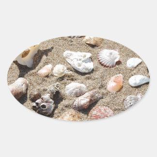 Sea shells. oval sticker