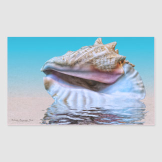 Sea Shells Pink and Turquoise Watercolor Sticker