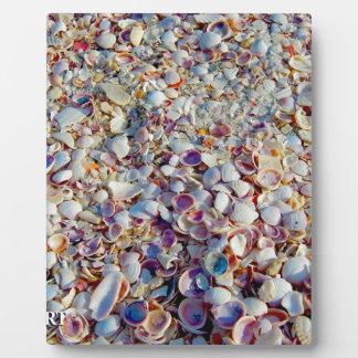 Sea Shells Plaque