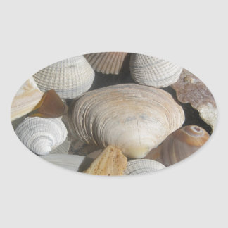 Sea Shells, surfer style Oval Sticker