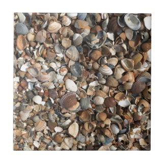 Sea shells tiles