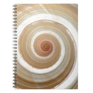 Sea Snail Shell Spiral Notebooks