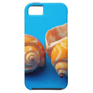 Sea Snails iPhone 5 Cases