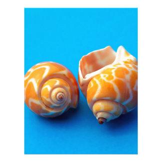 Sea Snails Letterhead