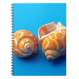 Sea Snails Spiral Notebook