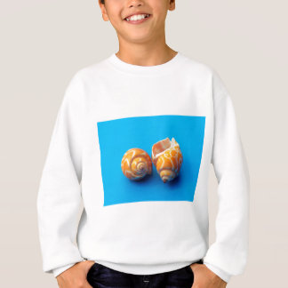 Sea Snails Sweatshirt