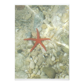 sea star card