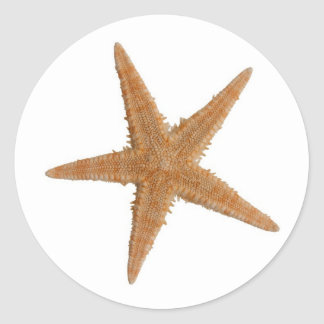 Sea star classic round sticker