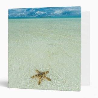 Sea star in shallow water, Palau 3 Ring Binder