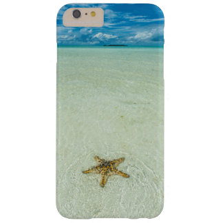 Sea star in shallow water, Palau Barely There iPhone 6 Plus Case