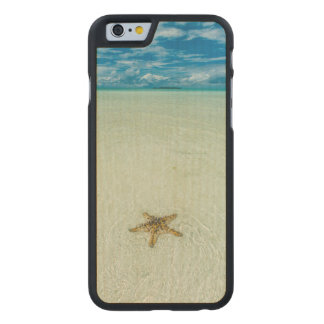 Sea star in shallow water, Palau Carved® Maple iPhone 6 Case