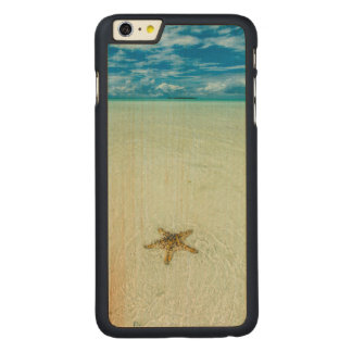 Sea star in shallow water, Palau Carved® Maple iPhone 6 Plus Case