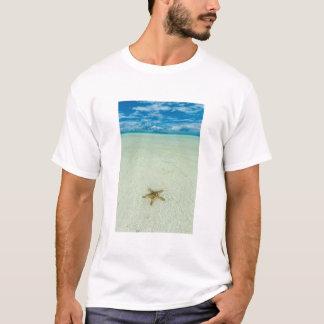 Sea star in shallow water, Palau T-Shirt