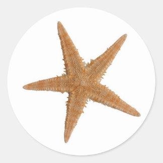 Sea star round sticker