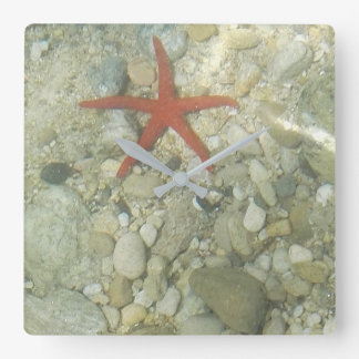 sea star square wall clock