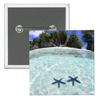 Sea stars, Rock Islands, Palau 2 Pinback Buttons
